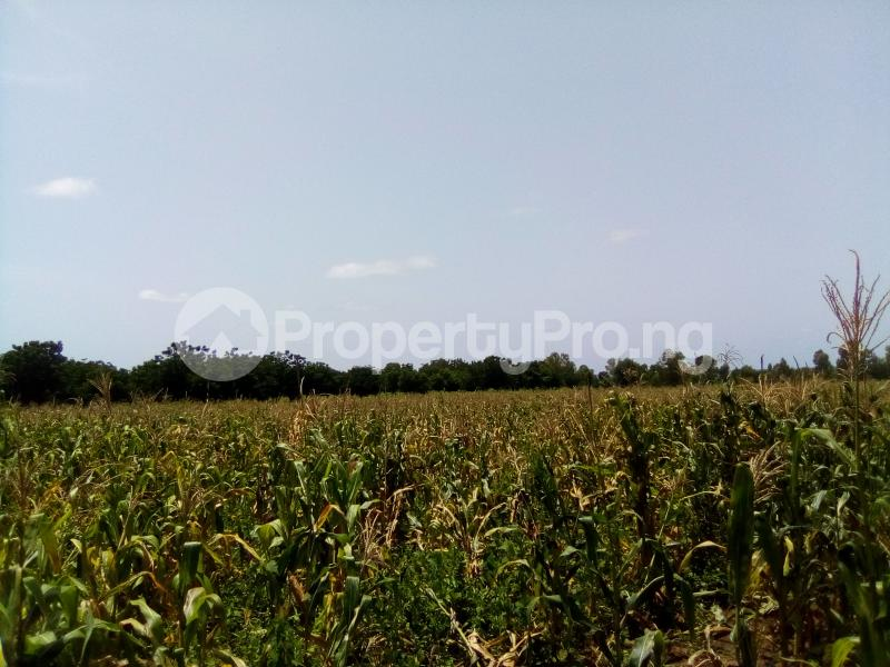 Commercial Land Land for sale AGWUA KUDENDE New EXTENSION Kaduna South Kaduna - 0