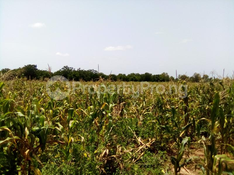 Commercial Land Land for sale AGWUA KUDENDE New EXTENSION Kaduna South Kaduna - 1