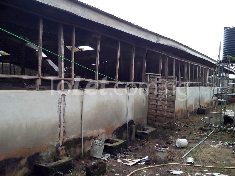 Land for sale Ijagba Oko-ewe, Ado Odo/Ota Ogun - 2