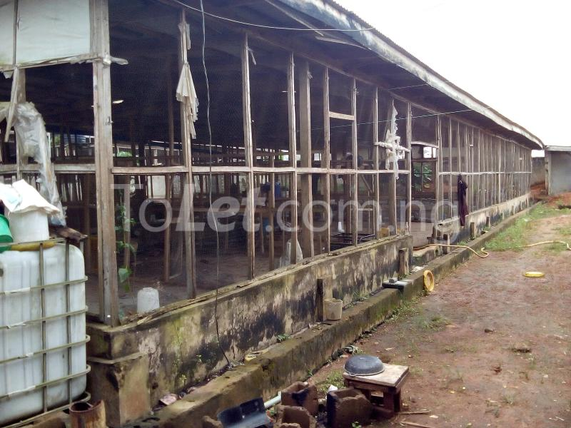 Land for sale Ijagba Oko-ewe, Ado Odo/Ota Ogun - 1