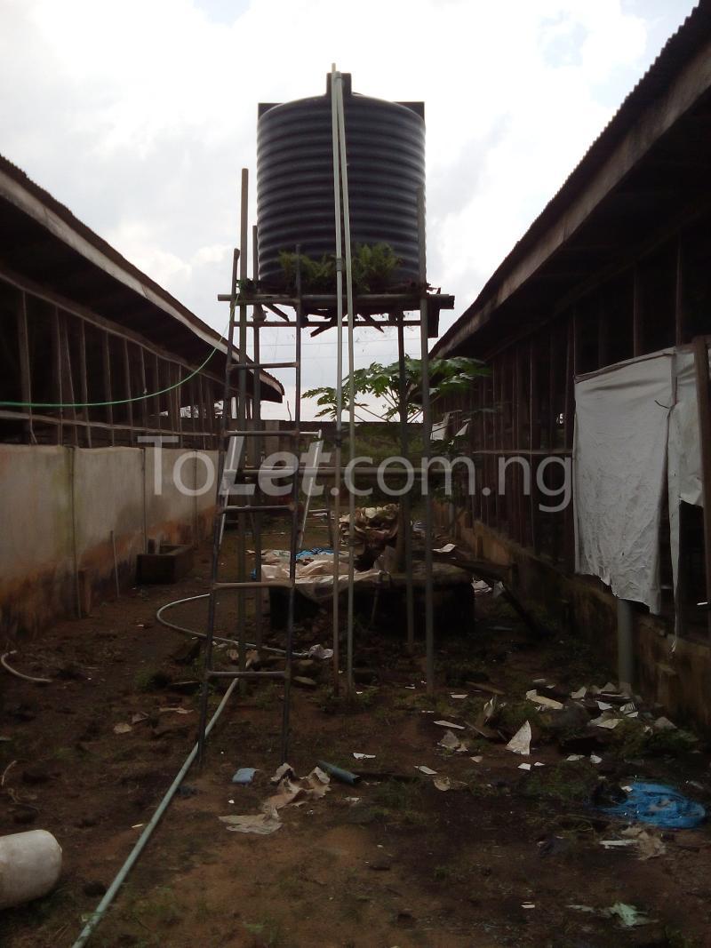 Land for sale Ijagba Oko-ewe, Ado Odo/Ota Ogun - 5
