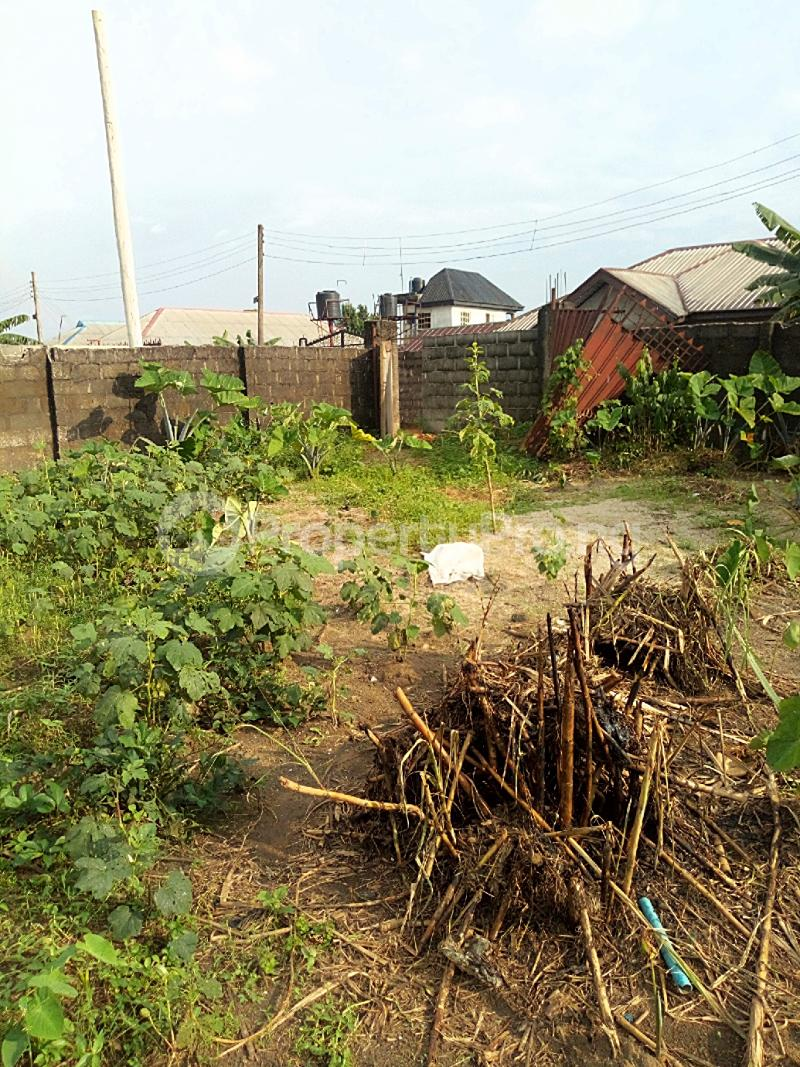 Residential Land Land for sale Elioparanwo Port Harcourt Rivers - 3