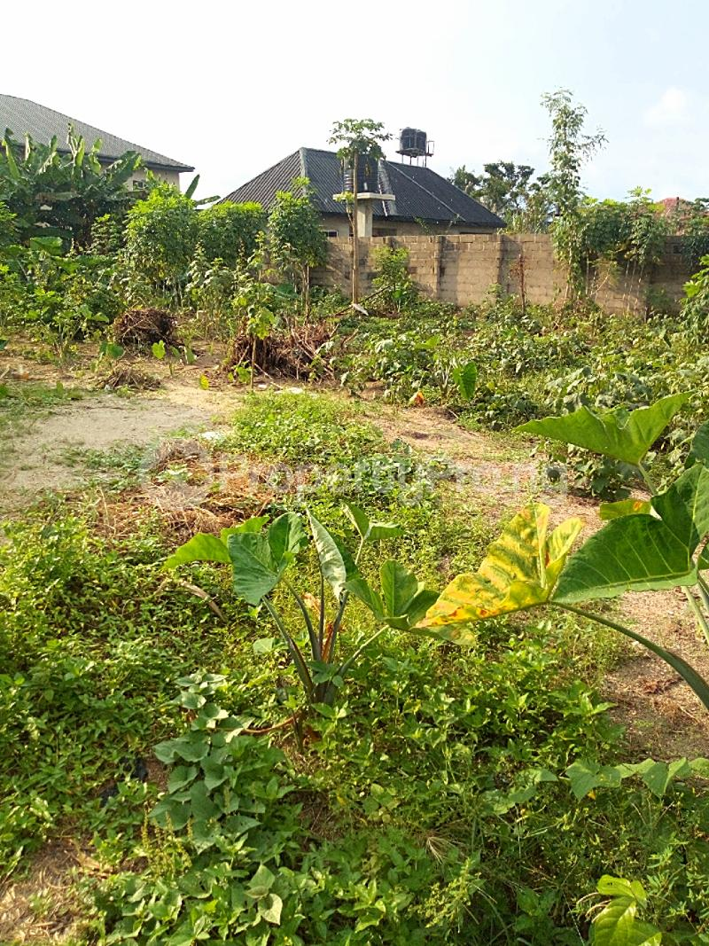 Residential Land Land for sale Elioparanwo Port Harcourt Rivers - 5