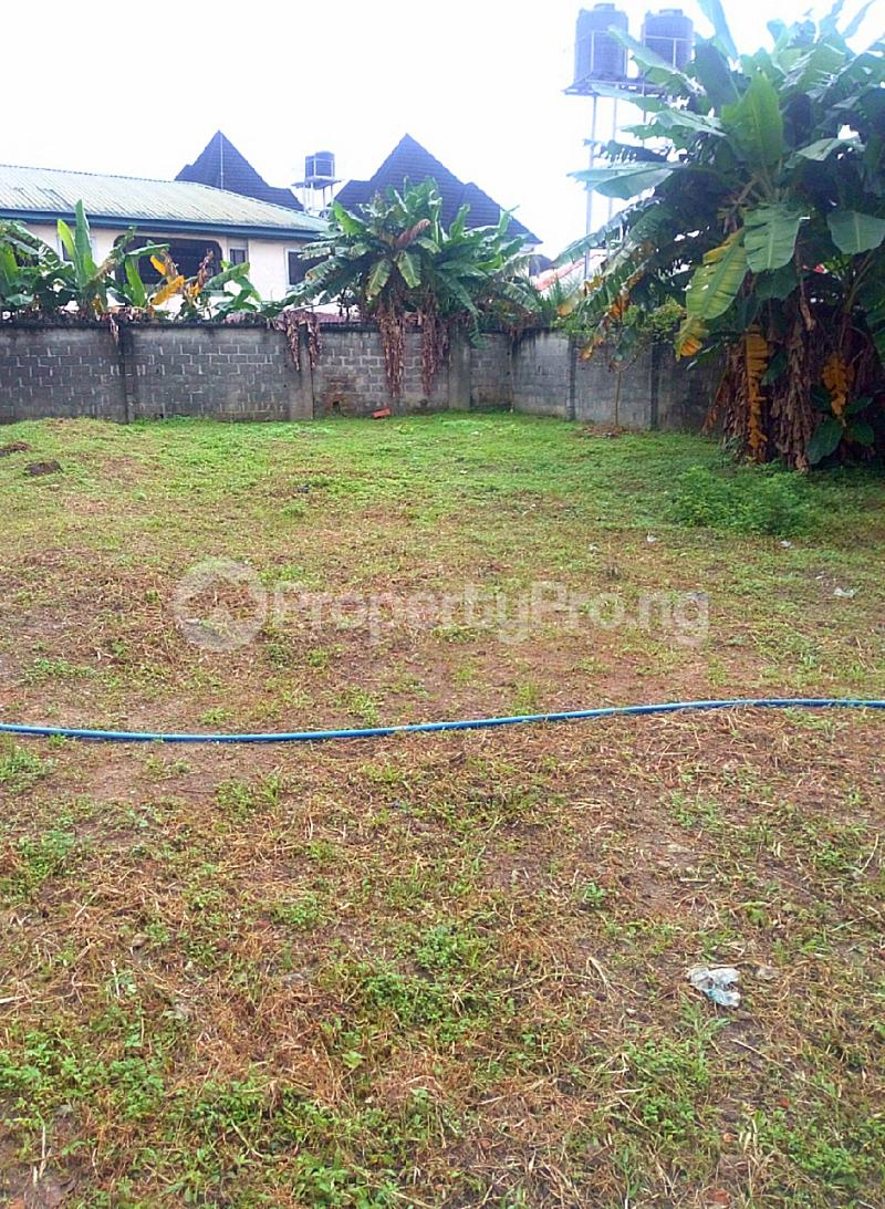 Residential Land Land for sale Royal Avenue Estate Peter Odili Port Harcourt Rivers - 3