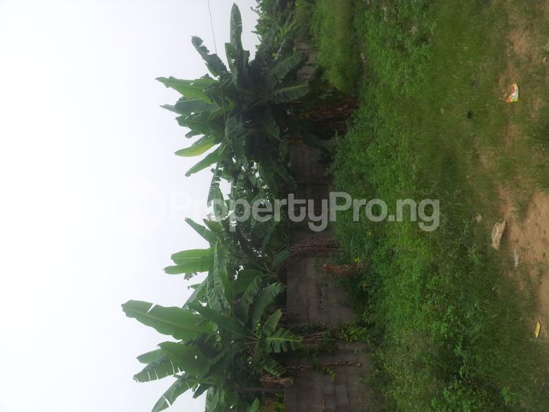 Mixed   Use Land Land for sale -  Ibeshe Ikorodu Lagos - 4