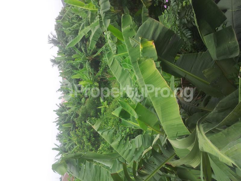 Mixed   Use Land Land for sale -  Ibeshe Ikorodu Lagos - 2