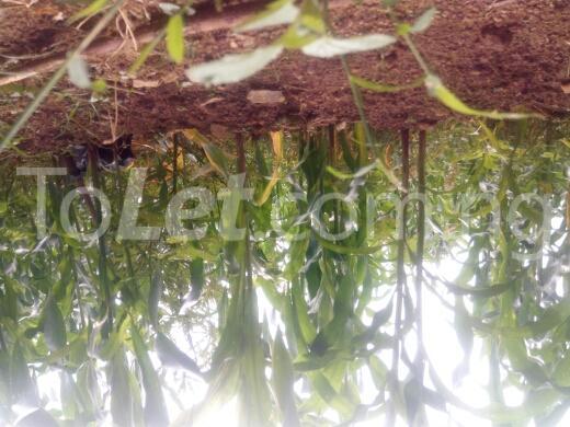 Land for sale keffi road Kaduna South Kaduna - 3