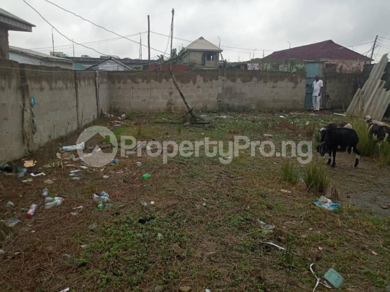 Mixed   Use Land Land for sale Unity Street, Off Samuel Street, Ogudu Ori Oke Ogudu Road Ojota Lagos - 0