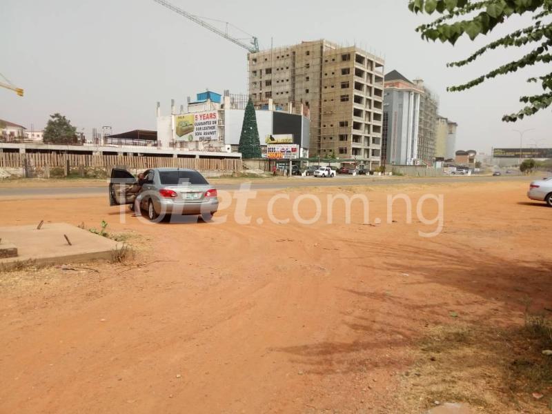 Land for sale By Alibet building near Amala Joint by Capital Hub Off Ahmadu Bello way Mabushi Abuja - 11