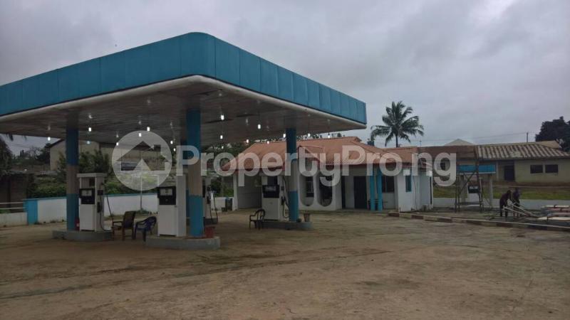 Commercial Property for sale  AKURE / ILESHA ROAD. Akure Ondo - 1