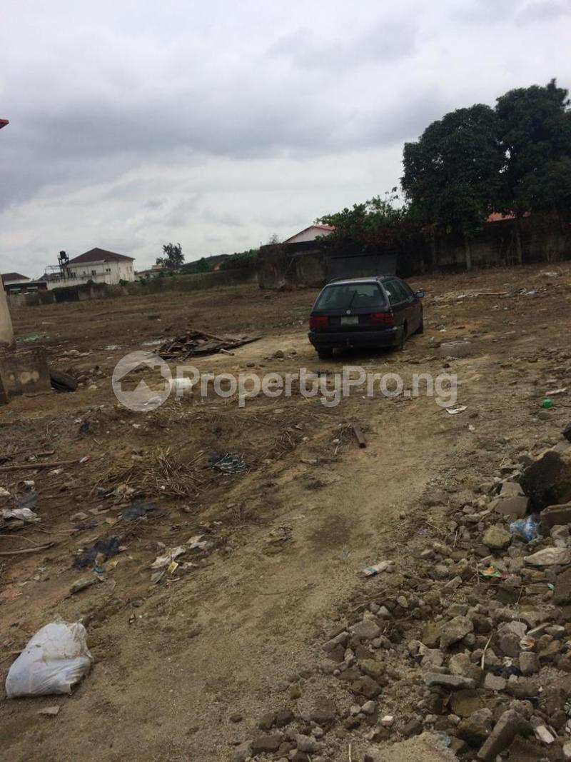 Land for sale Off Emily akinola  Akoka Yaba Lagos - 1