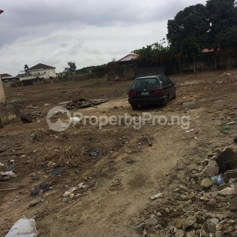 Land for sale Off Emily akinola  Akoka Yaba Lagos - 0