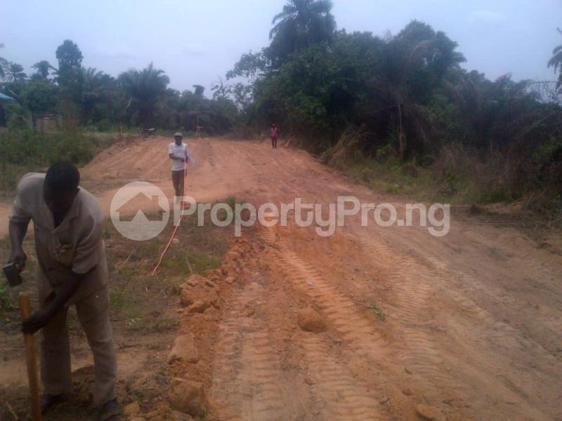 Land for sale Badeku  Egbeda Oyo - 0