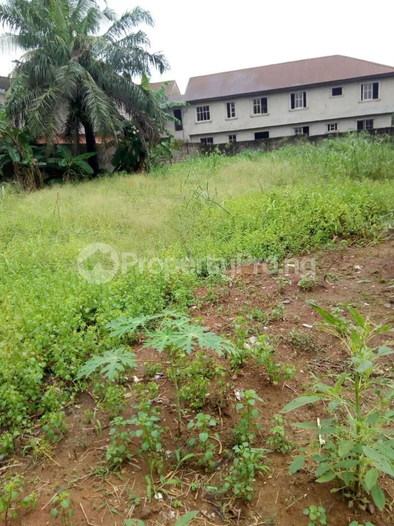 Residential Land Land for sale By living bread, Akesan bustop, off lasu isheri expressway  way, Igando Igando Ikotun/Igando Lagos - 3