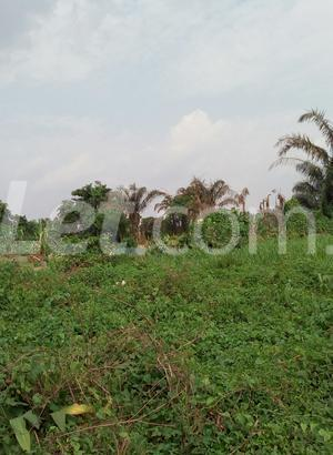 Mixed   Use Land Land for sale Ise/Orun Ise/Orun Ekiti - 6