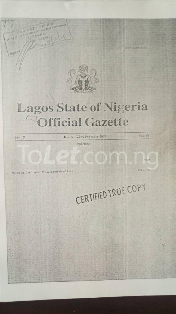 Land for sale SHIRIWON TOWN Free Trade Zone Ibeju-Lekki Lagos - 1