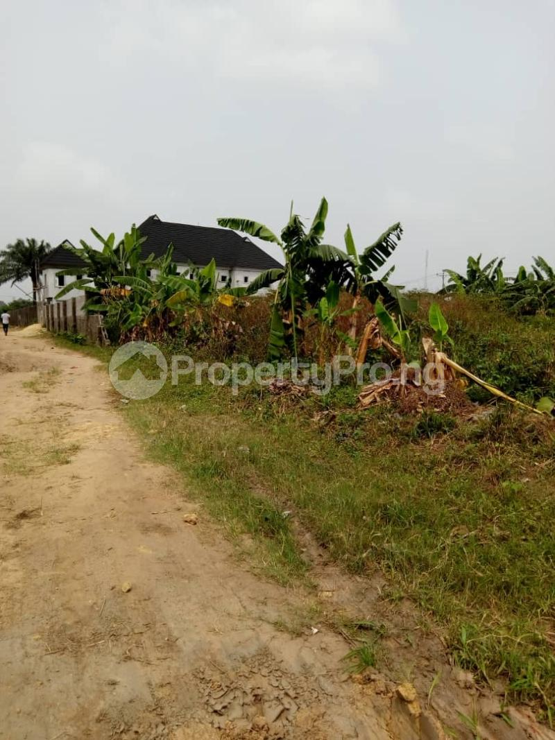 Commercial Property for sale New Rd Off Ada George Ada George Port Harcourt Rivers - 1