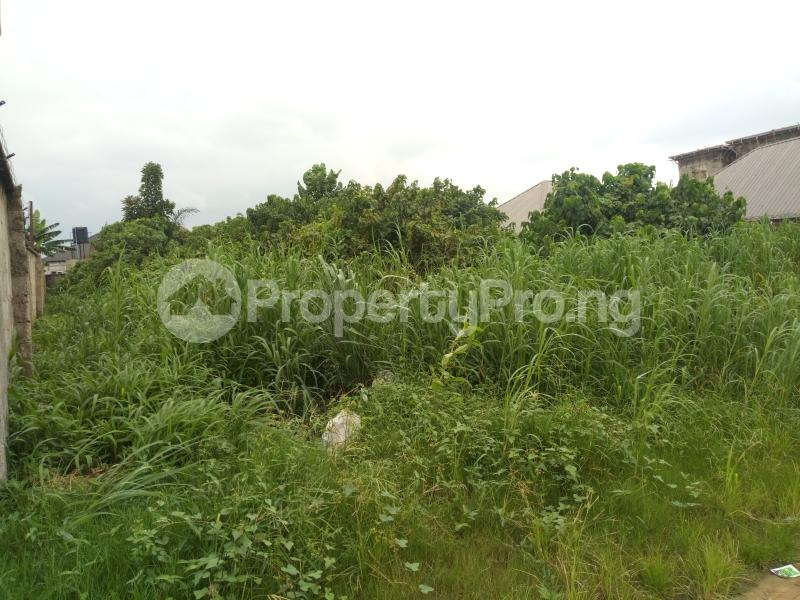 Commercial Land Land for sale New Rd Ada George Port Harcourt Rivers - 2