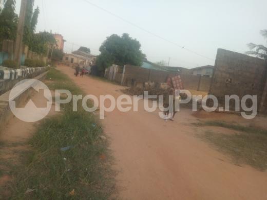 5 bedroom Bungalow for sale Agbede Agric Ikorodu Lagos - 3