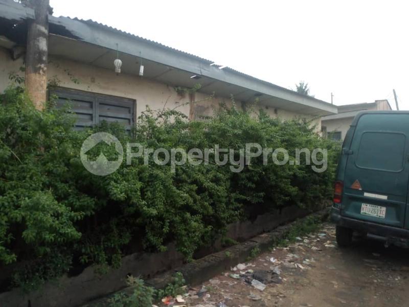 Residential Land Land for sale Sunday Awoyuigbo street Mafoluku Oshodi Lagos - 4