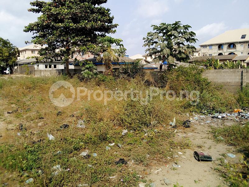 Mixed   Use Land Land for sale Iyanera, Alaba International - Agbara Axis Okokomaiko Ojo Lagos - 2