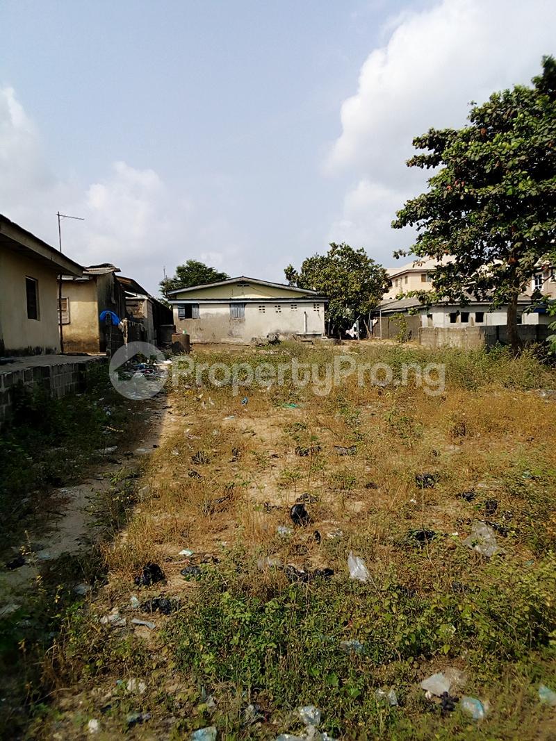 Mixed   Use Land Land for sale Iyanera, Alaba International - Agbara Axis Okokomaiko Ojo Lagos - 3