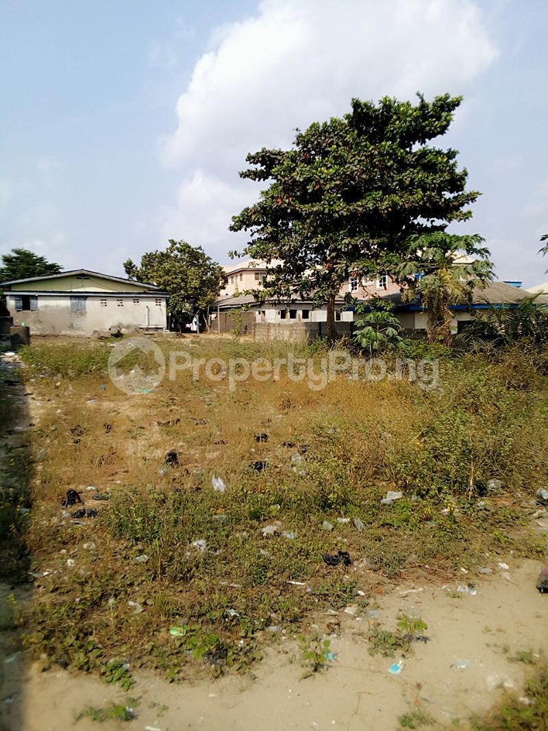 Mixed   Use Land Land for sale Iyanera, Alaba International - Agbara Axis Okokomaiko Ojo Lagos - 1