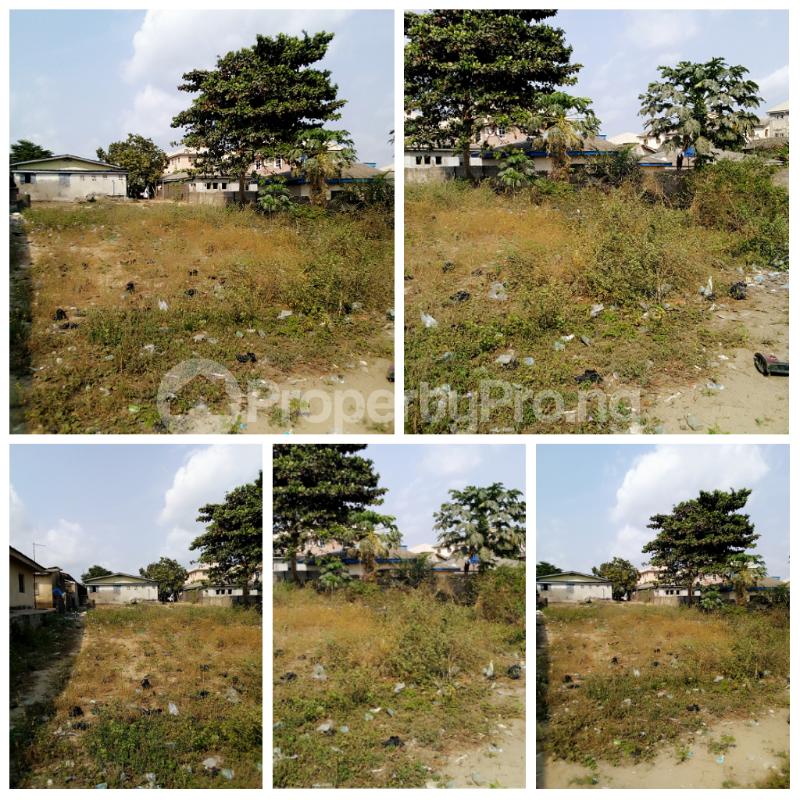 Mixed   Use Land Land for sale Iyanera, Alaba International - Agbara Axis Okokomaiko Ojo Lagos - 0
