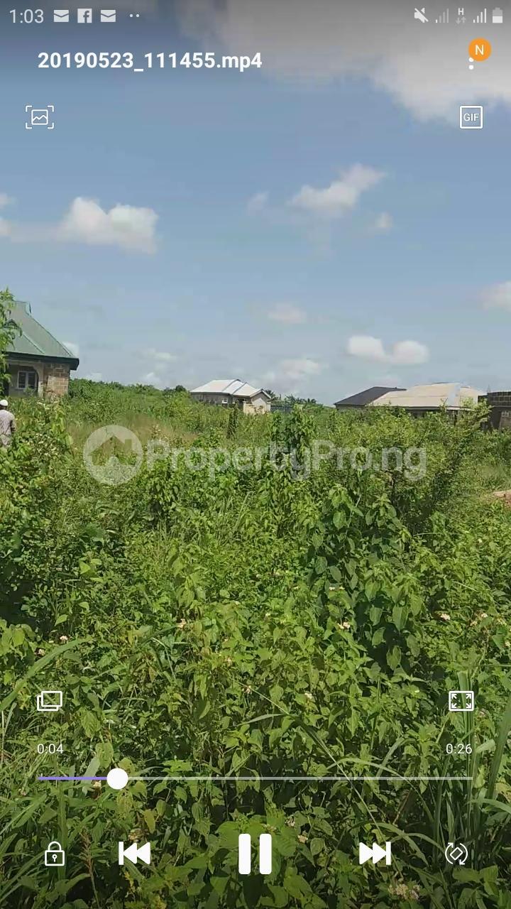 Residential Land Land for sale Arigbajo, Ifo Agbado Ifo Ogun - 4