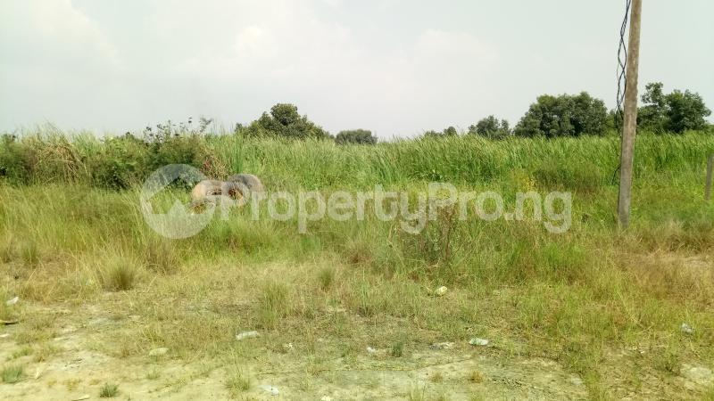 Mixed   Use Land Land for sale Owode Elede, off Ikorodu road Mile 12 Kosofe/Ikosi Lagos - 9