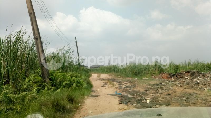 Mixed   Use Land Land for sale Owode Elede, off Ikorodu road Mile 12 Kosofe/Ikosi Lagos - 5