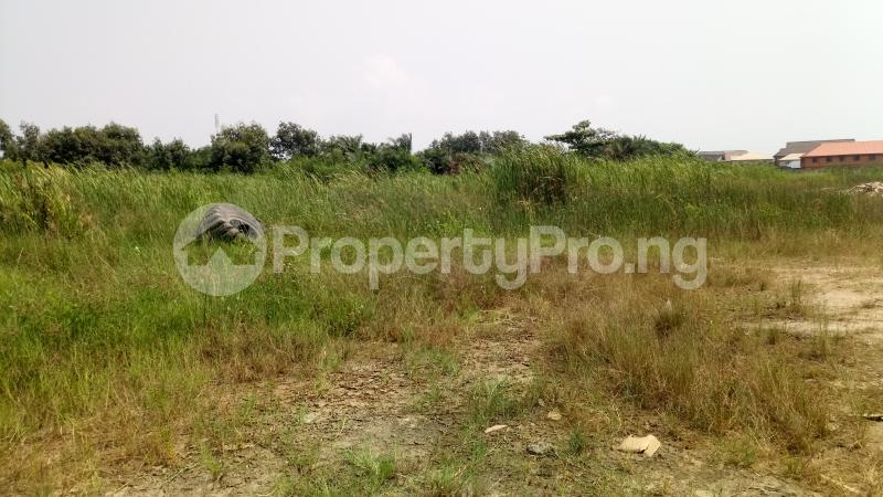 Mixed   Use Land Land for sale Owode Elede, off Ikorodu road Mile 12 Kosofe/Ikosi Lagos - 8