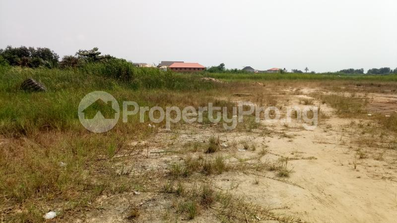 Mixed   Use Land Land for sale Owode Elede, off Ikorodu road Mile 12 Kosofe/Ikosi Lagos - 10