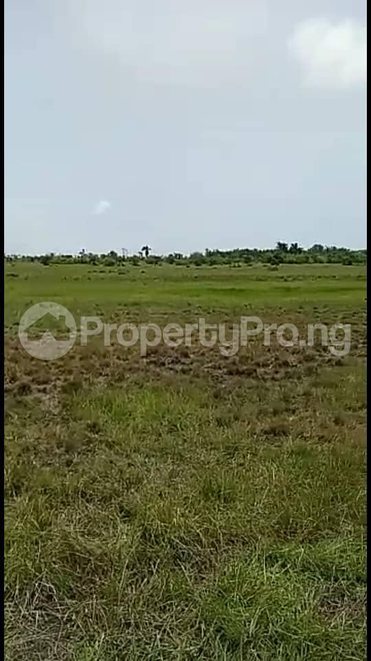 Residential Land Land for sale Free Trade Zone Ibeju-Lekki Lagos - 1