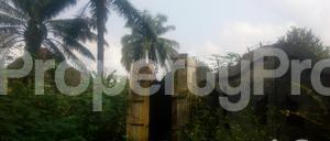 Residential Land Land for sale . Nnewi North Anambra - 0
