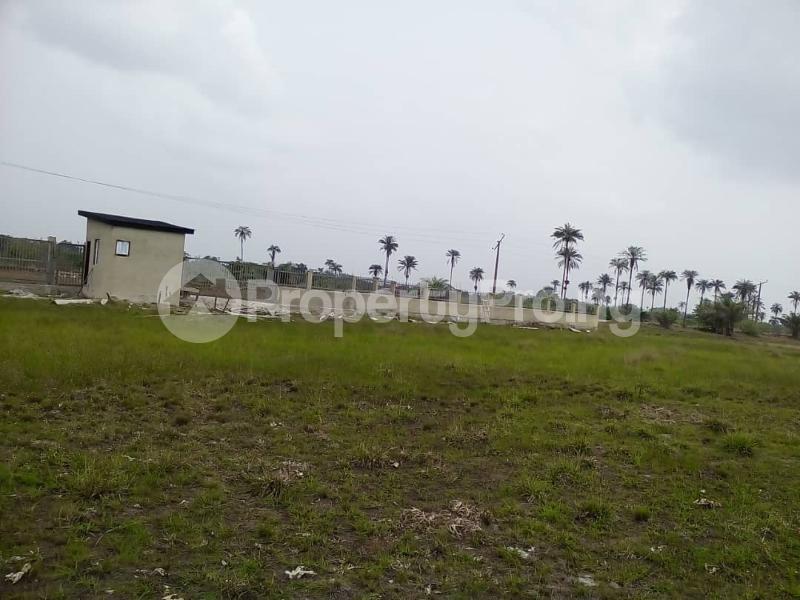 Residential Land Land for sale Alone Ibeju lekki Local Govt Area. Eluju Ibeju-Lekki Lagos - 3