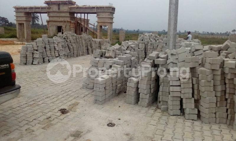 Residential Land Land for sale Avu-Oforola Off Portharcourt Road Owerri IMO State  Owerri Imo - 6