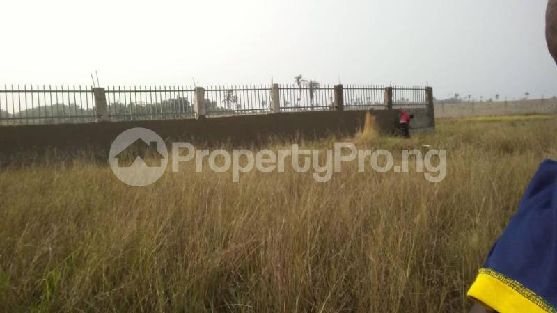 Residential Land Land for sale Bogije  Ibeju-Lekki Lagos - 5