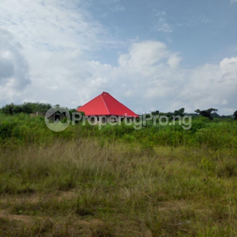 Land for sale near orisunbare off Lagos Ibadan express way Odo ona Ibadan Oyo - 4