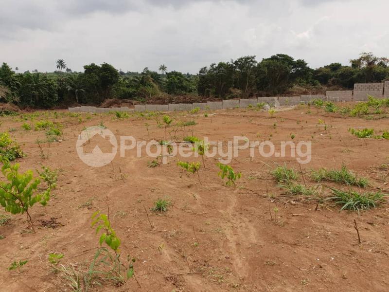 Mixed   Use Land Land for sale within the axis of Lagos-ibadan expressway, shagamu-ore highway Sagamu Sagamu Ogun - 0