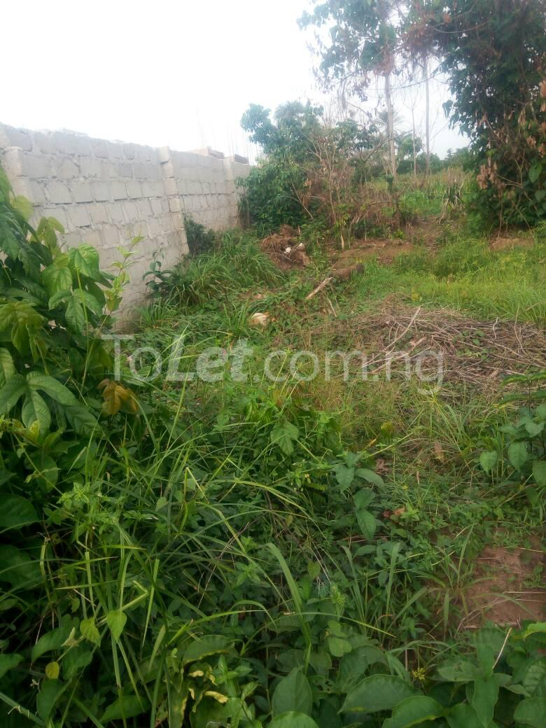 Land for sale Futo Road Owerri Imo - 1
