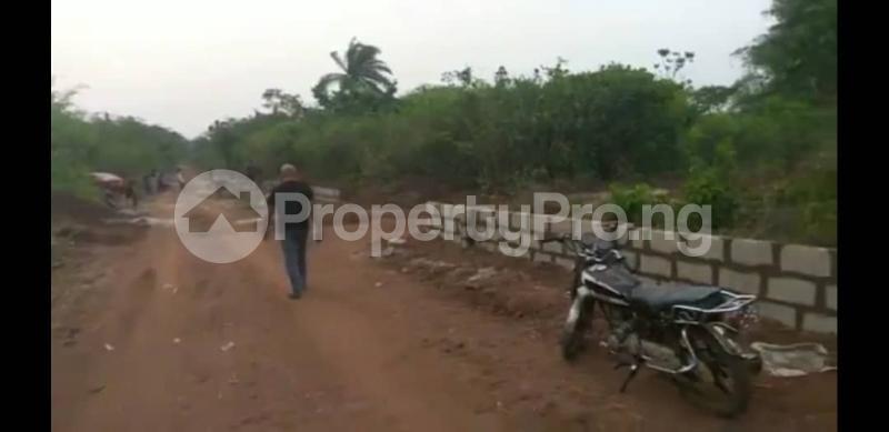 Land for sale GOODLIFE ESTATE AZAGBA-OGWASI, Asaba Delta - 2