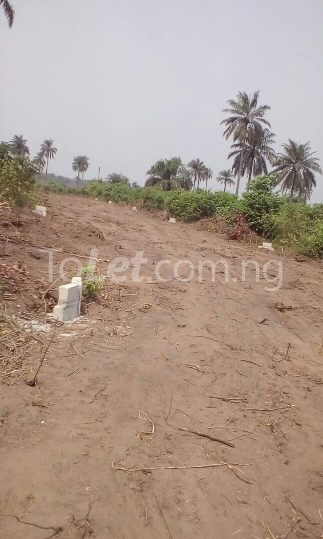 Land for sale Along Abia Road, Agbala by seat of wisdom seminary,  Ngor-Okpala Imo - 2