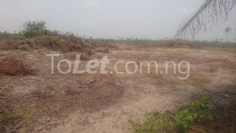Land for sale Okun imedu, Ibeju lekki Lekki Lagos - 2