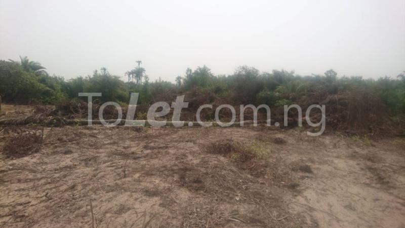 Land for sale Okun imedu, Ibeju lekki Lekki Lagos - 1