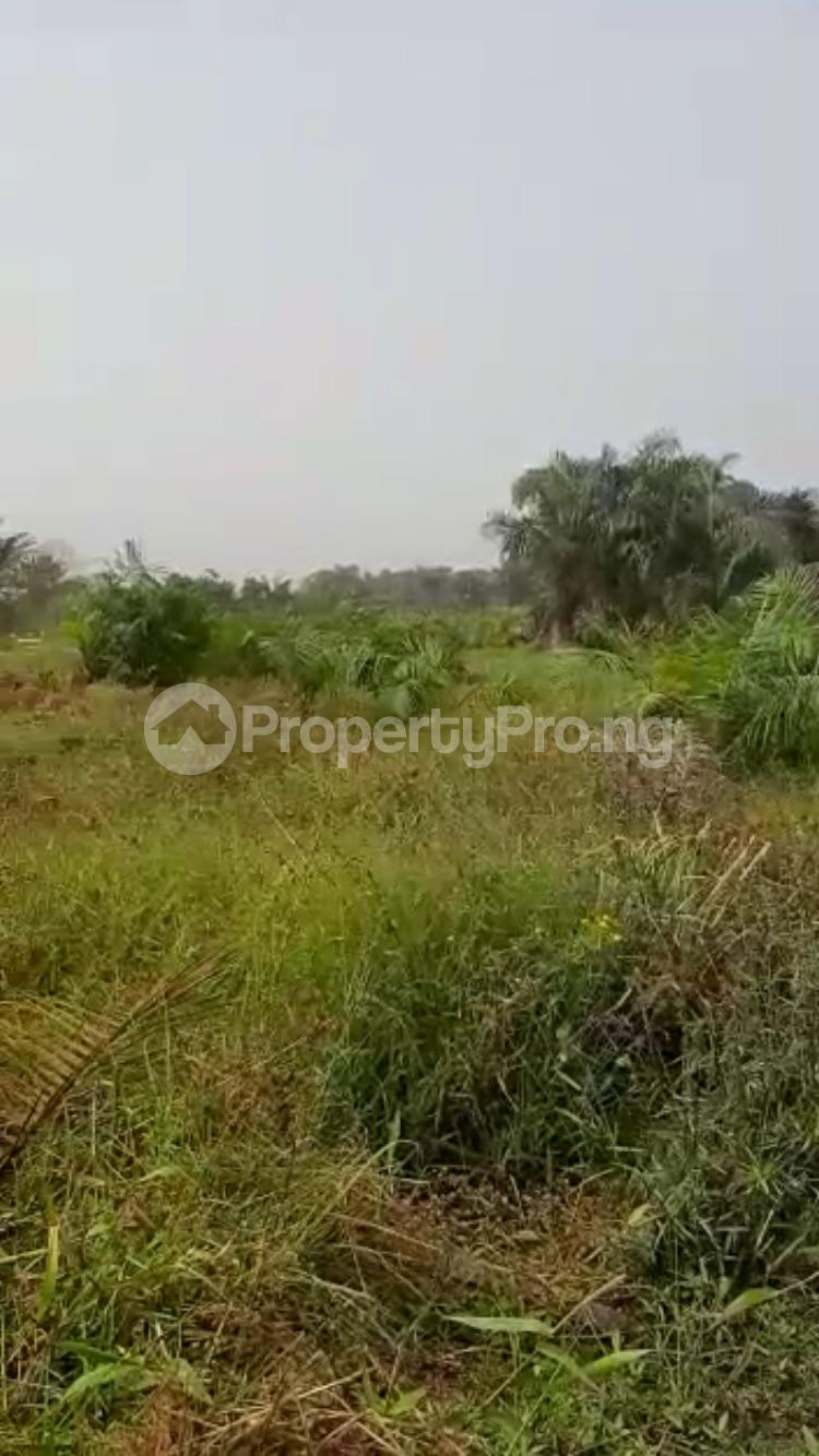 Residential Land Land for sale Solu alade Eleko Ibeju-Lekki Lagos - 11