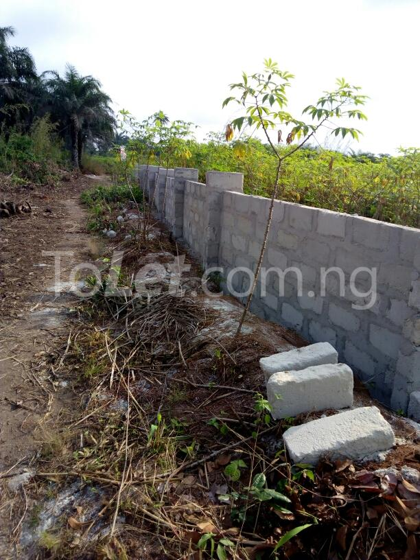 Mixed   Use Land Land for sale Airport Road Ngor-Okpala Imo - 1