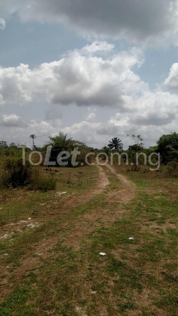 Land for sale AGLOW VILLE Eleranigbe Ibeju-Lekki Lagos - 6