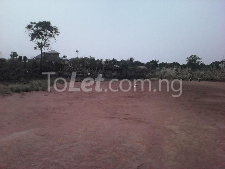 Land for sale - Mbaitoli Imo - 1