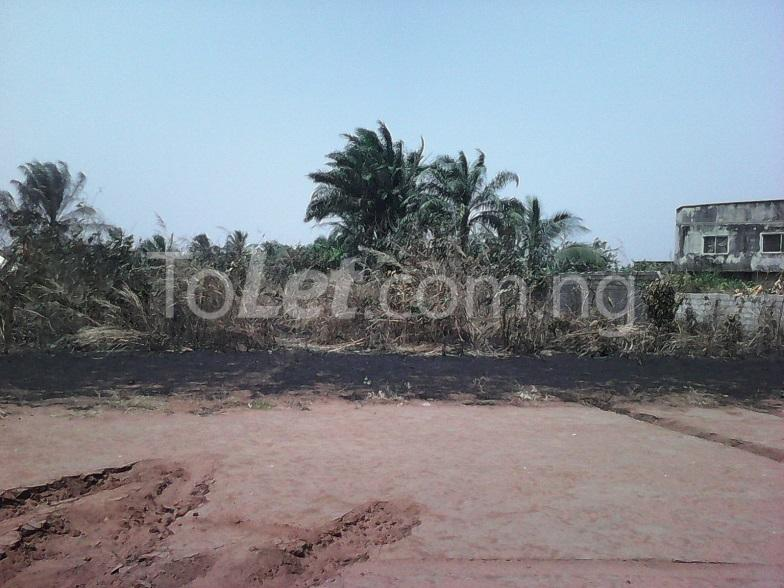 Land for sale - Mbaitoli Imo - 3